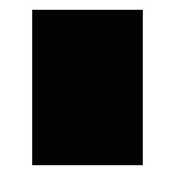 pablo-salas